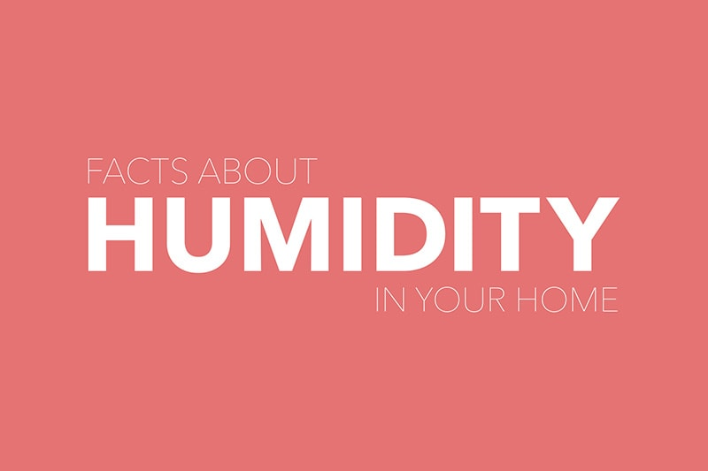 Video - Facts About Humidity
